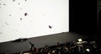 Faust bug à Compiègne