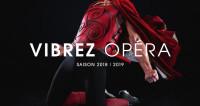 Saint-Étienne 2018/2019 : Vibrez Opéra !