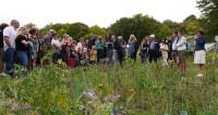 Éloge de la plante : l'opéra-jardin digital ensemence Royaumont