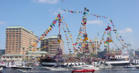 Opera Tampa 2020-2021, anniversaire reporté