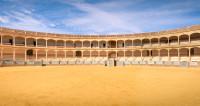 5 Opéras d'Espagne - 5. El Gato Montes