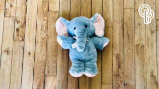 Conte musical familial déconfiné : L'Enfant d'éléphant (Rudyard Kipling avec Orchestre)