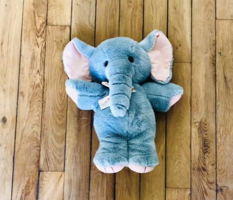 L'Histoire de l'Enfant d'Éléphant