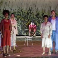 Marie-Claude Bottius, Isabelle Savigny, Martial Pauliat, Luanda Siquiera & Jean-Loup Pagesy - Le Code noir