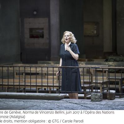 Norma, Ruxandra Donose