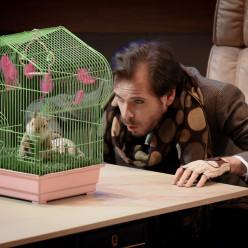 Ronan Debois (Saint-Germain) - Le Mystère de l'écureuil bleu
