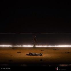 Siegfried par Robert Carsen