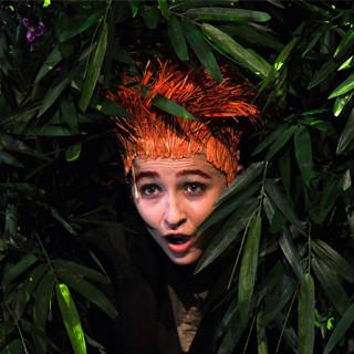 Poil de carotte de Zabou Breitman
