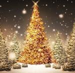 Le Père Noël à l'opéra : Devenir le Père Noël de Mark Adamo